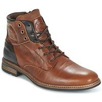 Zapatos Hombre Botas de caña baja Bullboxer MOHA Cognac