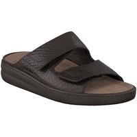 Zapatos Hombre Sandalias Mephisto JAMES Marrón