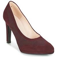 Zapatos Mujer Zapatos de tacón Peter Kaiser HERNA Burdeo