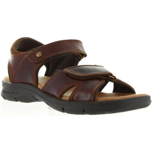 Zapatos especiales para hombres y mujeres Panama Jack SANDERS CLAY C1 Marrón