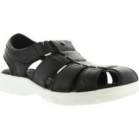 Zapatos Hombre Sandalias Panama Jack SHERPA B&W C1 Negro