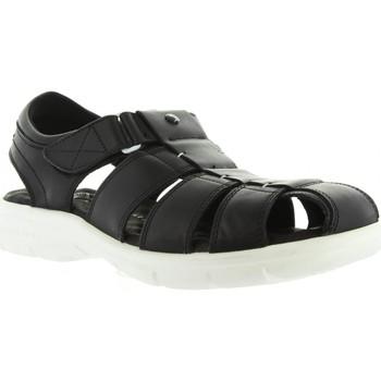 Zapatos Hombre Sandalias Panama Jack SHERPA BW C1 Negro