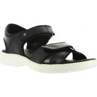 Zapatos Hombre Sandalias Panama Jack SANDERS BW C1 Negro