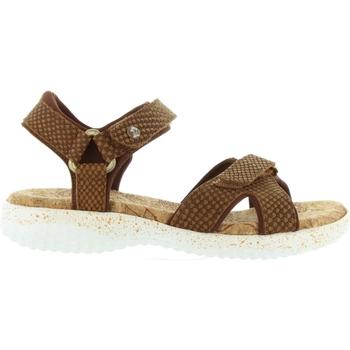 Zapatos Mujer Sandalias Panama Jack NOJA SNAKE B3 Marrón