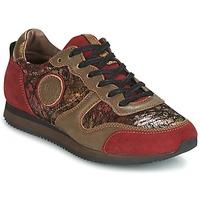 Zapatos Mujer Zapatillas bajas Pataugas IDOL Rojo / Marrón