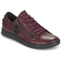 Zapatos Mujer Zapatillas bajas Pataugas JESTER Burdeo