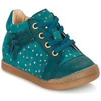 Zapatos Niña Zapatillas altas Babybotte FALSIFI Turquesa / Oro
