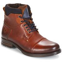 Zapatos Hombre Botas de caña baja Coxx Borba AGOZ Camel / Azul