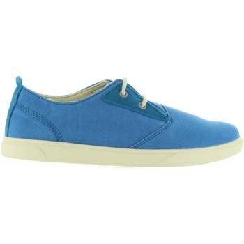 Zapatos Niños Zapatillas bajas Timberland A1JAJ GROVETON Azul