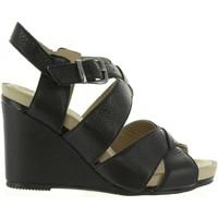 Zapatos Mujer Sandalias Hush puppies 560600-50 FINTAN Negro