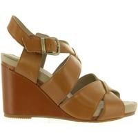 Zapatos Mujer Sandalias Hush puppies 560602-50 FINTAN Marr?n