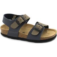 Zapatos Niños Sandalias Grunland GRU-CCC-SB0901-BT-b Multicolore