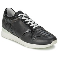 Zapatos Mujer Zapatillas bajas Bikkembergs KATE 420 Negro