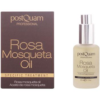 Belleza Mujer Hidratantes & nutritivos Postquam Rosa Mosqueta Oil Especific Treatment  30 ml