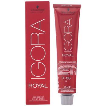 Belleza Mujer Coloración Schwarzkopf Igora Royal 0-88  60 ml