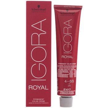 Belleza Tratamiento capilar Schwarzkopf Igora Royal 4-88  60 ml