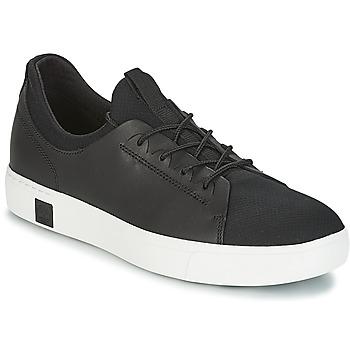 Zapatos Hombre Zapatillas bajas Timberland AMHERST LTHR LTT SNEAKER Negro