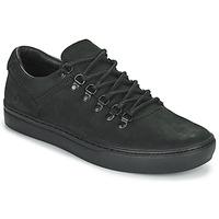 Zapatos Hombre Zapatillas bajas Timberland ADV 2.0 CUPSOLE ALPINE OX Negro