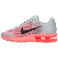 Zapatos Niños Multideporte Nike Nike Air Max Sequent 2 (GS)