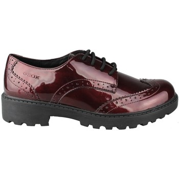 Zapatos Niños Derbie Geox CASEY GK CHAROL GRANATE