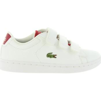 Zapatos Niños Zapatillas bajas Lacoste 34SPC0001 CARNABY 286 WHT-RED Blanco