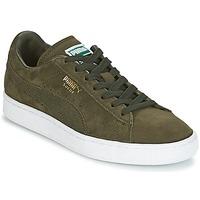 Zapatos Zapatillas bajas Puma SUEDE CLASSIC + Kaki / Blanco