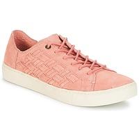 Zapatos Mujer Zapatillas bajas Toms LENOX Flor