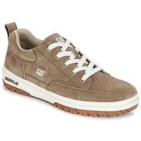 Zapatos Hombre Zapatillas bajas Caterpillar DECADE Gris