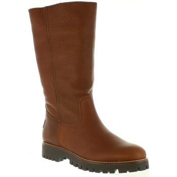 Zapatos Mujer Botas urbanas Panama Jack TANIA B22 Marr?n