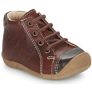 Zapatos Niño Botas de caña baja GBB NOE Vte / Fauna / Dpf / Raiza