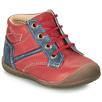 Zapatos Niño Botas de caña baja Catimini RATON Rojo / Marino
