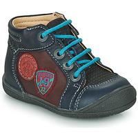Zapatos Niño Botas de caña baja Catimini REGLISSE Vts / Marino - burdeos / Dpf / Kimbo