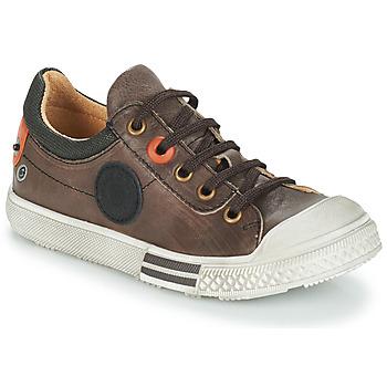 Zapatos Niño Botas de caña baja GBB UGO Marrón