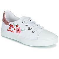 Zapatos Niña Zapatillas bajas Catimini SAXIFAGE Blanco