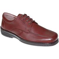 Zapatos Hombre Derbie Primocx Zapato cordones hombre especial para diabéticos muy cómodo marrón