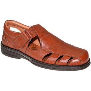 Zapatos Hombre Sandalias Primocx Sandalias hombre especial para diabéticos muy cómodas marrón