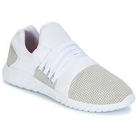 Zapatos Hombre Zapatillas bajas Asfvlt AREA LUX Blanco / Gris