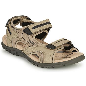 Zapatos Hombre Sandalias de deporte Geox S.STRADA D Arena / Marino