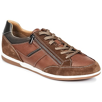 Zapatos Hombre Zapatillas bajas Geox U RENAN C Marrón