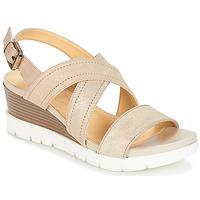 Zapatos Mujer Sandalias Geox MARYKARMEN P.B Oro / Beige