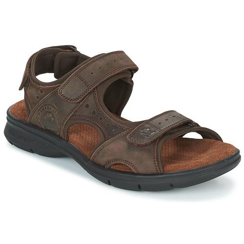 Zapatos especiales para hombres y mujeres Panama Jack SALTON Marrón