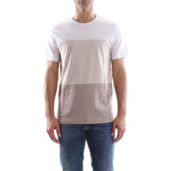 textil Hombre camisetas manga corta Premium By Jack&jones 12118214 BLOCK TEE T-SHIRT Hombre MOONBEAM MOONBEAM