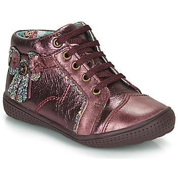 Zapatos Niña Botas de caña baja Catimini RHUBARBE Burdeo