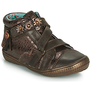 Zapatos Niña Botas de caña baja Catimini ROQUETTE Marrón / Oro