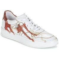 Zapatos Mujer Zapatillas bajas Felmini CRASKY Blanco / Rojo