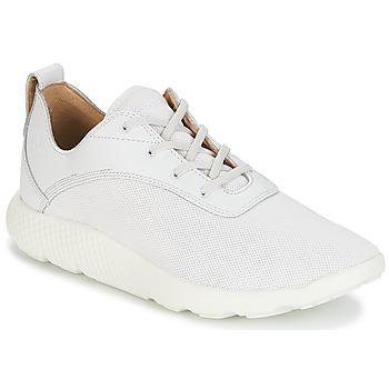 Zapatos Hombre Zapatillas bajas Timberland FLYROAM Blanco