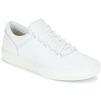 Zapatos Hombre Botas de caña baja Timberland ADVENTURE2.0 CUPSOLE Blanco