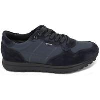 Zapatos Hombre Zapatos para el agua Igi&co Zapatillas Deportivas GTX 8741 azul