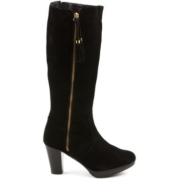 Zapatos Mujer Botas Califers Bota Alta Mujer Negro Notting Hill Collection Negro