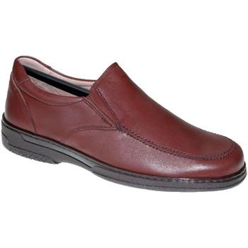 Zapatos Hombre Mocasín Primocx Zapato hombre gomas especial para diabéticos extra cómodo marrón